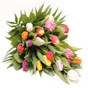 baarebuket-tulipaner.w293.h293.backdrop